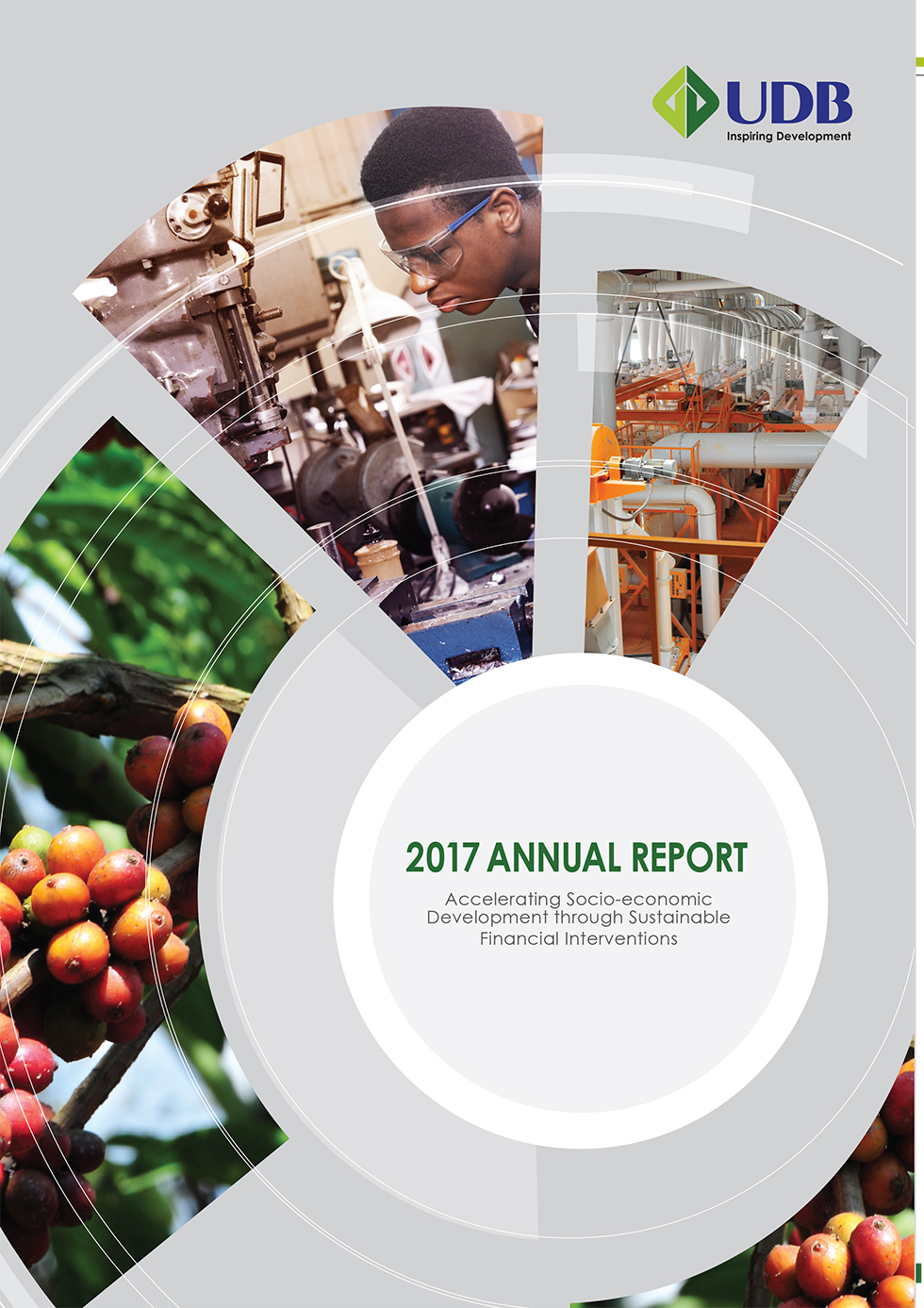 UDB Annual Report 2017